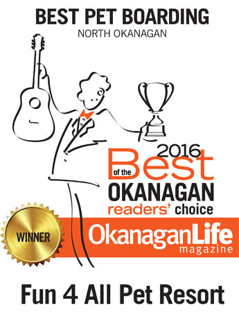 Voted best doggie daycare, dog groomer, and dog boarding in Vernon, BC and the Okanagan